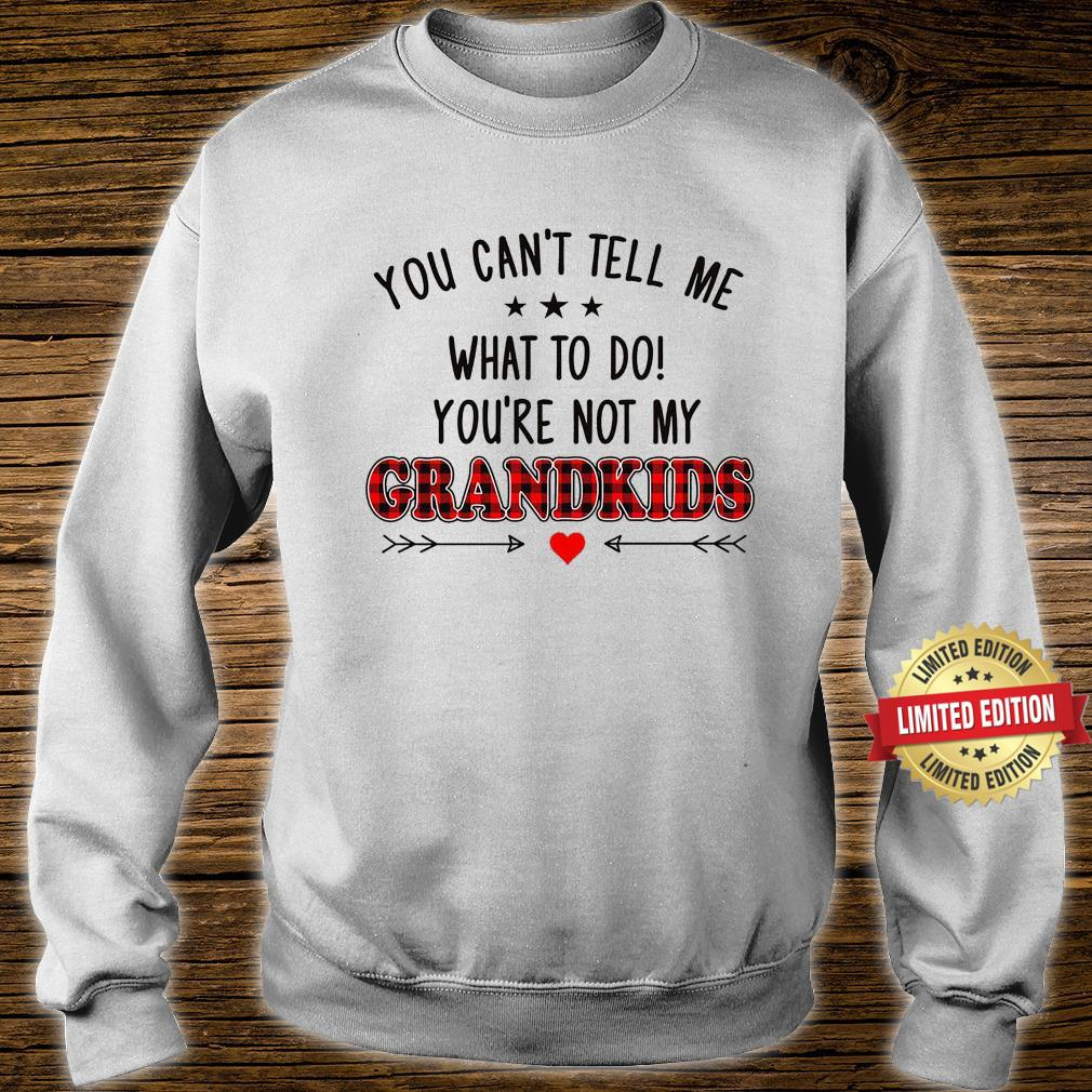 YOU ARE NOT MY GRANDKIDS SHIRT sweater