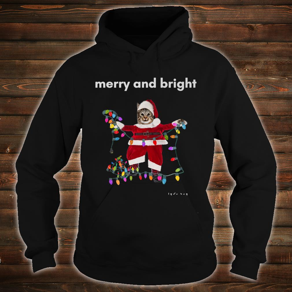 Merry Christmas Cat With Colorful Lights Shirt hoodie